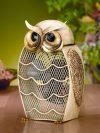 Funky Snow Owl Shaped Fan