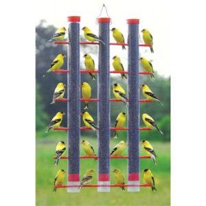 24 Finches Feeder