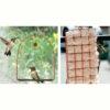 Hummingbird Swing & Nesting Material
