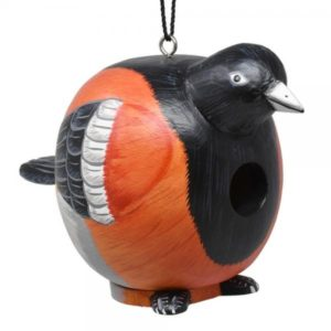 Oriole Shaped Birdhouse